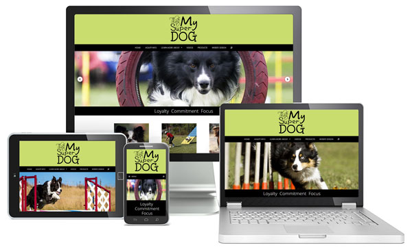 Austin Website Design - Wordpress
